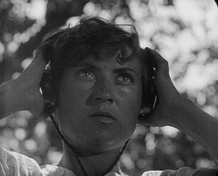 Enthusiasm (1930), Dziga Vertov